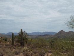Photo of 16785 W Rio Escondido Place, Lot 11A, Wickenburg, AZ 85390 (MLS # 5794022)