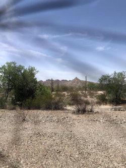 Photo of 5515 W Wilma Road, Lot 47, Queen Creek, AZ 85142 (MLS # 5794206)