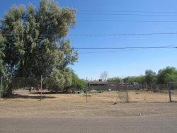 Photo of 311 E Elwood Street, Lot 52, Phoenix, AZ 85040 (MLS # 5796833)
