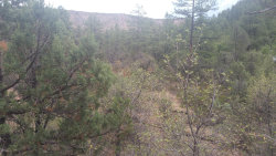 Photo of +/- 2.85 ac E From 1105 Fsr 512 Road, Lot from 1P, Young, AZ 85554 (MLS # 5799896)