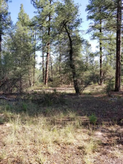 Photo of 0 S Fred's Road, Lot -, Young, AZ 85554 (MLS # 5806459)