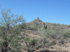 Photo of 0 N Avram Place, Lot 81, Queen Creek, AZ 85142 (MLS # 5834438)