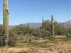 Photo of 16625 E Montgomery Road, Lot -, Scottsdale, AZ 85262 (MLS # 5847818)