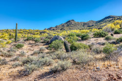 Photo of 37008 N Nighthawk Way, Lot 7, Carefree, AZ 85377 (MLS # 5867739)
