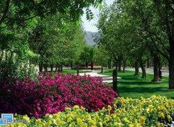 Photo of 20496 E Via De Arboles --, Lot 42, Queen Creek, AZ 85142 (MLS # 5871851)