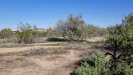 Photo of 1540 W Rambling Road, Lot 211-51-053F, Phoenix, AZ 85086 (MLS # 5887496)