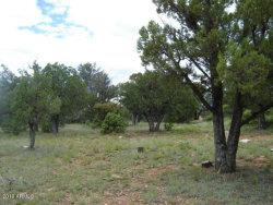 Photo of 158 S Squirrels Nest Lane, Lot 15, Christopher Creek, AZ 85541 (MLS # 5890115)