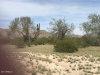 Photo of 11830 W Sweet Acacia Drive, Lot 2C, Casa Grande, AZ 85194 (MLS # 5901592)