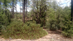 Photo of 1802 E Senna Point, Lot 870, Payson, AZ 85541 (MLS # 5940063)