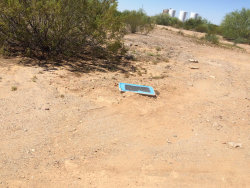 Photo of 225 Vladek Circle, Lot 196, Morristown, AZ 85342 (MLS # 5941079)