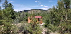 Photo of 470 E Forest Service Road, Lot 5, Young, AZ 85554 (MLS # 5941938)