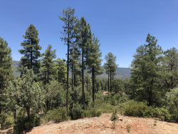 Photo of XXXX Forest Trail, Lot 64, Pine, AZ 85544 (MLS # 5945790)