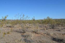 Photo of 304XX W Pinnacle Vista Road, Lot 132, Wittmann, AZ 85361 (MLS # 5962575)