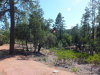 Photo of 2418 E Scarlet Bugler Circle, Lot 734, Payson, AZ 85541 (MLS # 5967479)