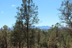 Photo of 701 N Maranatha Road, Lot 8, Payson, AZ 85541 (MLS # 5968669)