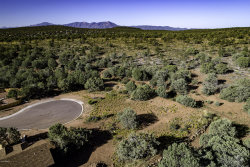 Photo of 1307 N Earhart Parkway, Lot 102, Payson, AZ 85541 (MLS # 5981198)