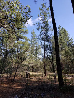 Photo of 0 S Fred's Road, Lot -, Young, AZ 85554 (MLS # 5983297)