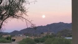 Photo of 43116 N 14th Street, Lot 202-20-713, New River, AZ 85087 (MLS # 5984337)