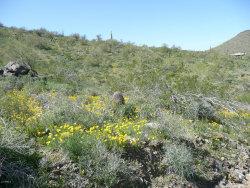 Photo of 3303 W Rambling Road, Lot -, Desert Hills, AZ 85086 (MLS # 5992495)