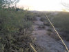 Photo of 295 E Thurber Road, Lot 1, Wickenburg, AZ 85390 (MLS # 6004847)