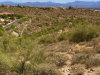 Photo of 15842 E Ocotillo Drive, Lot 5, Fountain Hills, AZ 85268 (MLS # 6005374)