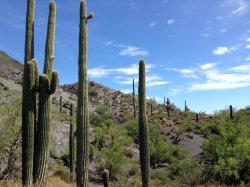 Photo of 37xxx N Blue Ridge Place, Lot 0, Cave Creek, AZ 85331 (MLS # 6006771)
