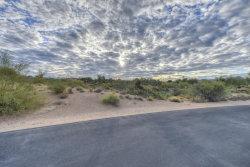 Photo of 29645 N 109th Place, Lot 133, Scottsdale, AZ 85262 (MLS # 6007015)