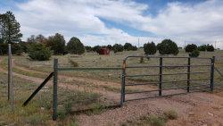 Photo of 293 N Seeley Road, Lot C, Young, AZ 85554 (MLS # 6018864)