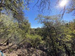 Photo of 2704 E Coyote Mint Circle, Lot 44, Payson, AZ 85541 (MLS # 6021097)