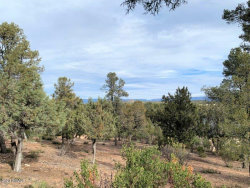 Photo of 1102 S Milk Ranch Point, Lot 92, Payson, AZ 85541 (MLS # 6026386)