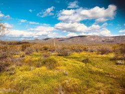 Photo of 1620 E Venado Drive, Lot 1, New River, AZ 85087 (MLS # 6044647)