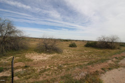 Photo of 23606 W Peters Road, Lot 021-D, Casa Grande, AZ 85193 (MLS # 6056004)