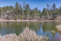 Photo of 144 S Hunter Creek Drive, Lot 144, Christopher Creek, AZ 85541 (MLS # 6067594)