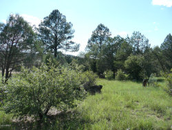 Photo of 7390 W Forest Svc Rd 200 --, Lot 20, Young, AZ 85554 (MLS # 6067965)
