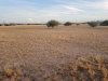 Photo of 9XXX-B W Phillips Road, Lot 54, Arizona City, AZ 85123 (MLS # 6093702)