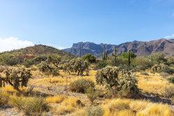 Photo of 10571 E Maverick Trail, Lot 39, Gold Canyon, AZ 85118 (MLS # 6096282)