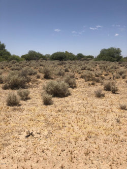 Photo of 2778 S Sunshine Boulevard, Lot 95, Casa Grande, AZ 85194 (MLS # 6097652)