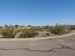 Photo of 21163 W Western Drive, Lot 87, Buckeye, AZ 85396 (MLS # 6101151)