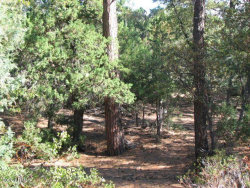 Photo of 1104 N Button Brush Court, Lot 807, Payson, AZ 85541 (MLS # 6101577)
