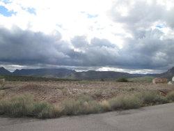 Photo of 390 W Cherrywood Place, Lot 33, Superior, AZ 85173 (MLS # 6113828)