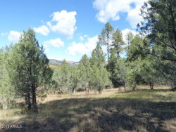 Photo of 33 W Forest Svc Rd 200 --, Lot 33, Young, AZ 85554 (MLS # 6122578)