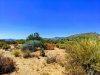 Photo of 9778 E Sundance Trail, Lot 324, Scottsdale, AZ 85262 (MLS # 6168039)