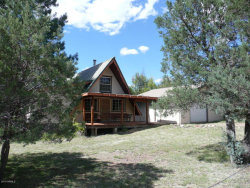 Photo of 359 W Haigler Lane, Young, AZ 85554 (MLS # 5491886)
