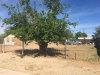 Photo of 210 S 2nd Street, Buckeye, AZ 85326 (MLS # 5586098)