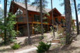Photo of 157 W Homestead Lane, Payson, AZ 85541 (MLS # 5622361)