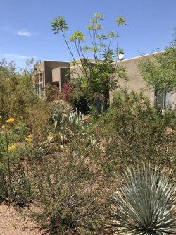 Photo of 13030 E Gold Dust Avenue, Scottsdale, AZ 85259 (MLS # 5634548)