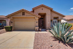 Photo of 31014 N 44th Place, Cave Creek, AZ 85331 (MLS # 5646473)