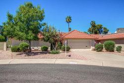 Photo of 12138 S Tomi Drive, Phoenix, AZ 85044 (MLS # 5649128)