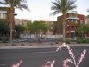 Photo of 6745 N 93rd Avenue, Unit 1144, Glendale, AZ 85305 (MLS # 5649140)