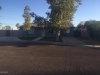 Photo of 8707 E Roanoke Avenue, Scottsdale, AZ 85257 (MLS # 5676223)